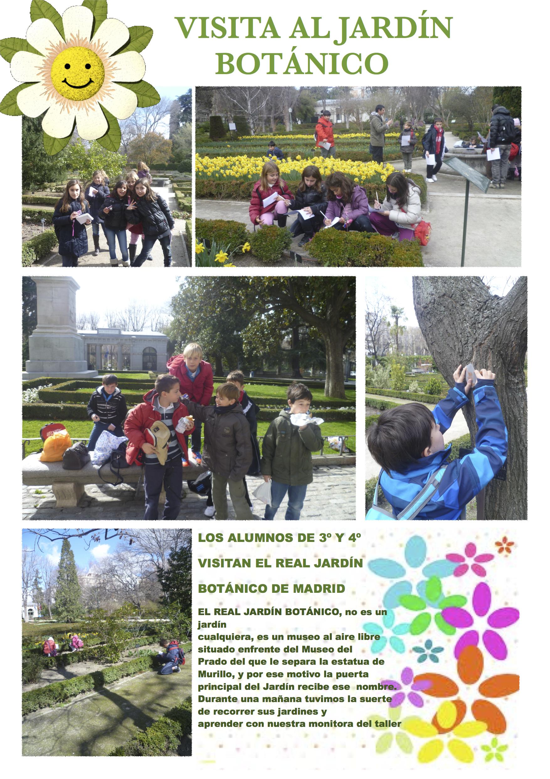 Visitamos el real jard n bot nico el blog del ceip san lucas for Ceip jardin botanico
