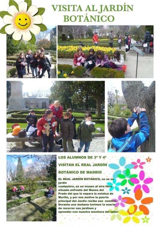 jardin botanico 1