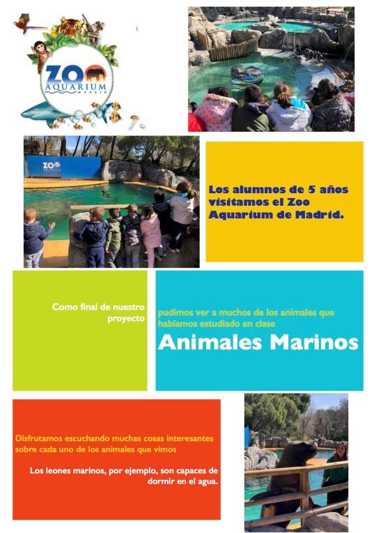 Zoo 5 años1