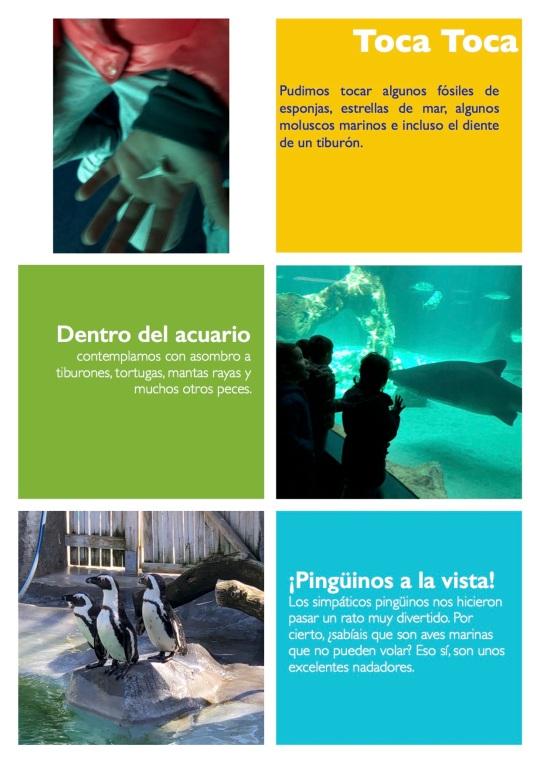 Zoo 5 años2