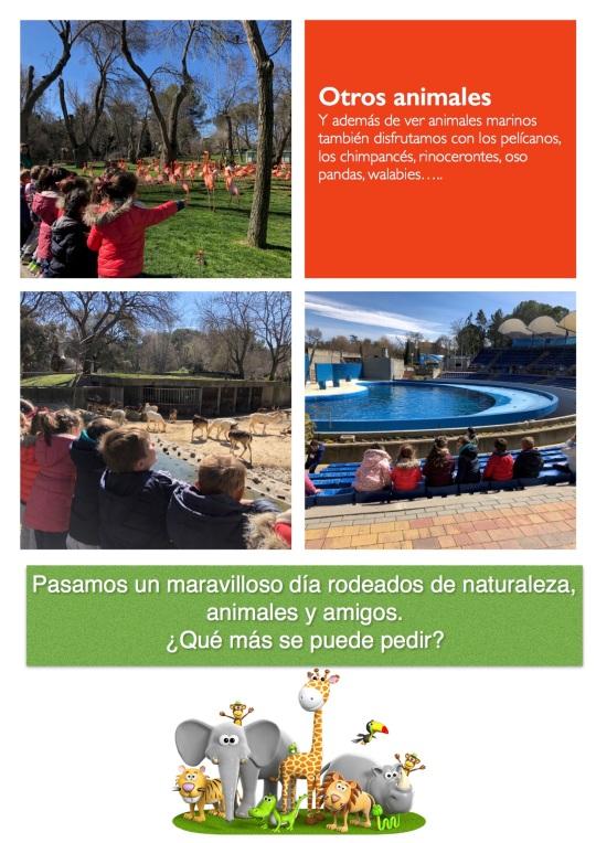 Zoo 5 años3