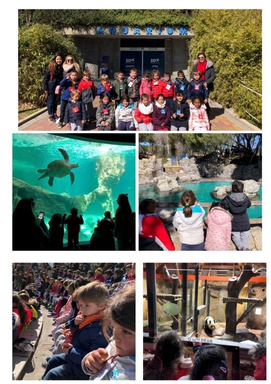 Zoo 5 años4