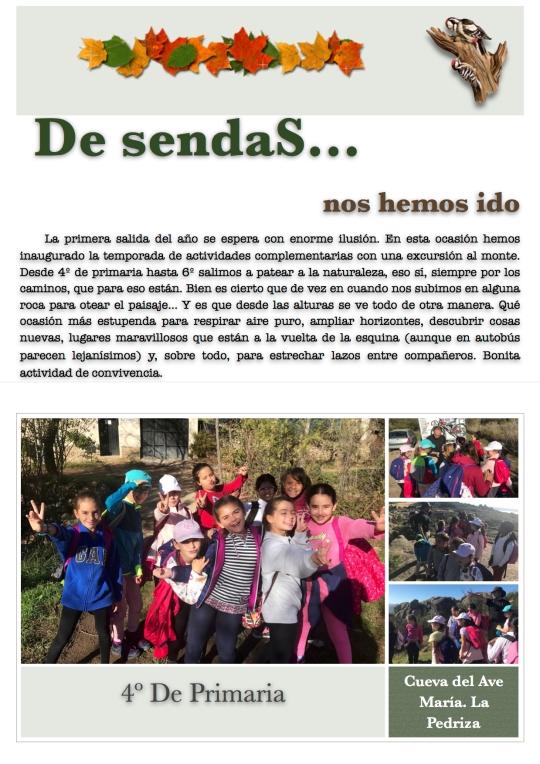 Sendas18.1
